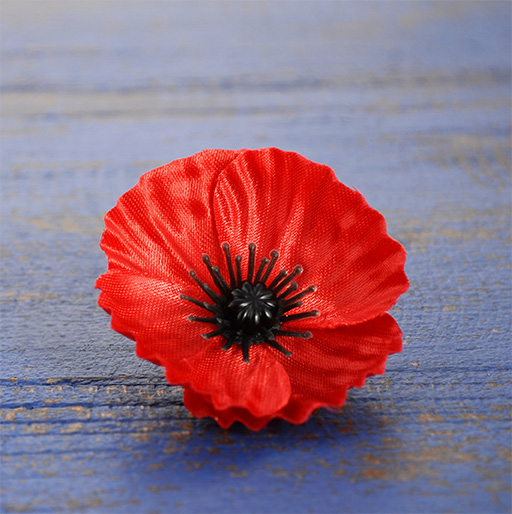 Our Remembrance day Gift Ideas for Friends